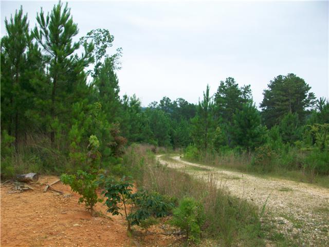Lots and Land - Sugar Tree, TN (photo 2)