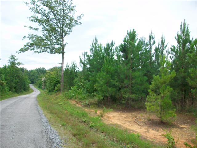 Lots and Land - Sugar Tree, TN (photo 3)