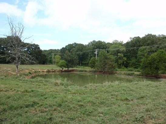 Lots and Land - Burns, TN (photo 3)