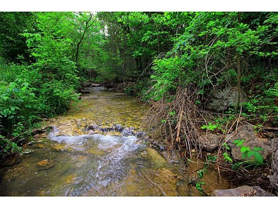 Lots and Land - Eureka Springs, AR (photo 3)