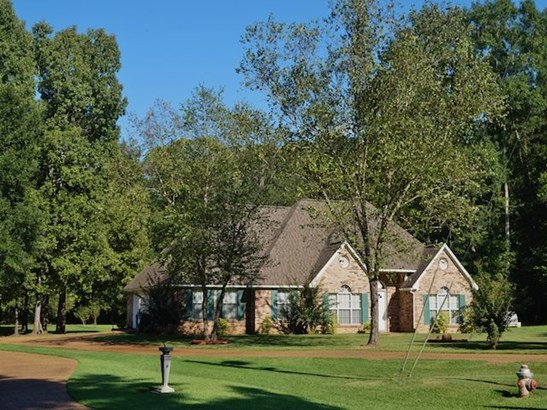 Residential/Single Family - Terry, MS