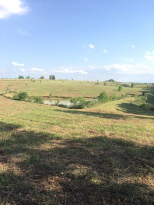 Lots and Land - Mc Ewen, TN (photo 4)