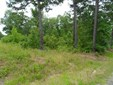 Lots and Land - Pearcy, AR (photo 1)