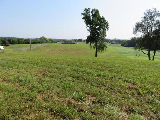 Lots and Land - Vonore, TN (photo 4)