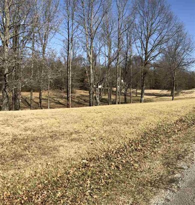 Lots and Land - Trenton, TN (photo 2)