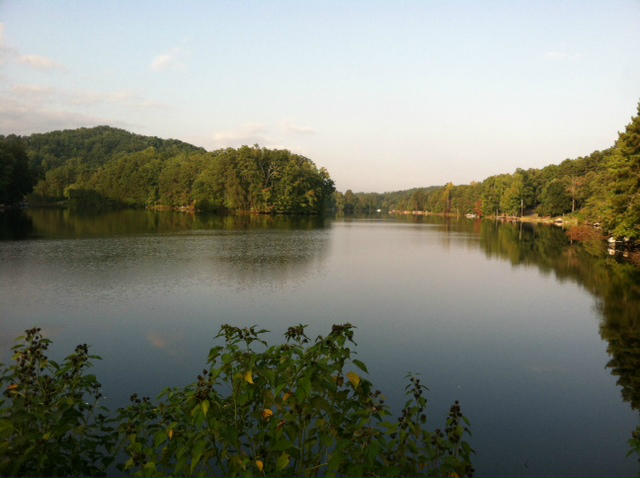 Lots and Land - Madisonville, TN (photo 4)