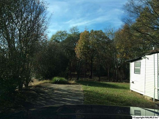 Lots and Land - Cartersville, AL (photo 3)
