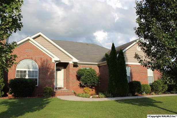 Residential/Single Family - TONEY, AL (photo 1)