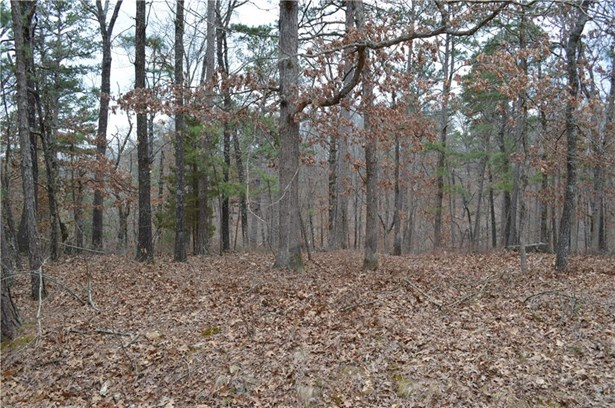 Lots and Land - Bella Vista, AR (photo 1)