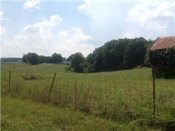 Lots and Land - Burns, TN (photo 4)