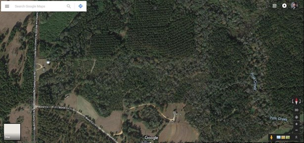 Lots and Land - Sumrall, MS (photo 4)