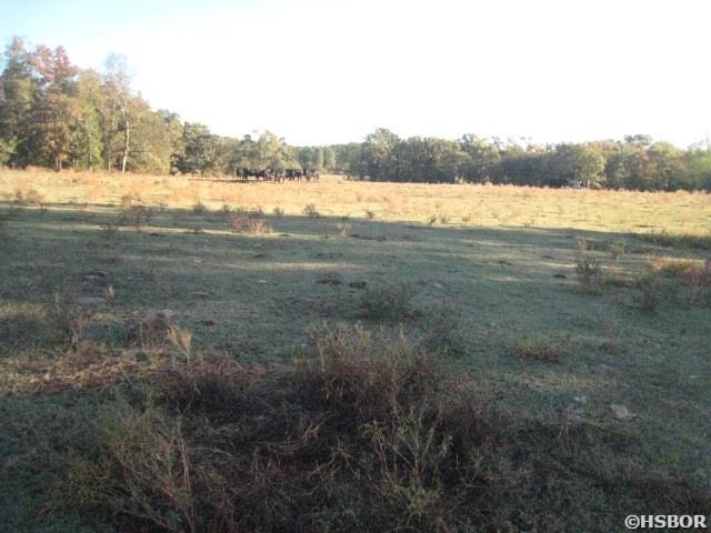 Lots and Land - Royal, AR (photo 5)