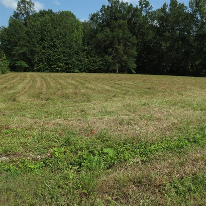 Lots and Land - Smithville, TN (photo 1)