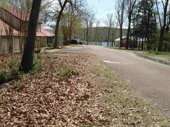 Lots and Land - Pickwick Dam, TN (photo 2)