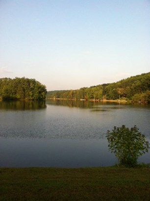 Lots and Land - Madisonville, TN (photo 3)
