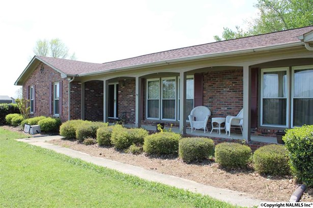 Residential/Single Family - HAZEL GREEN, AL (photo 4)