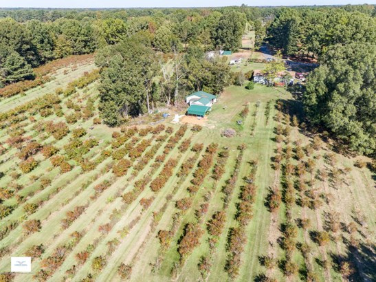 Residential/Single Family - Senatobia, MS (photo 4)