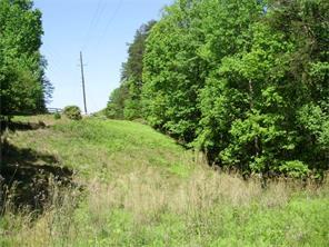Lots and Land - Dahlonega, GA (photo 1)