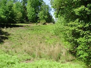 Lots and Land - Dahlonega, GA (photo 4)