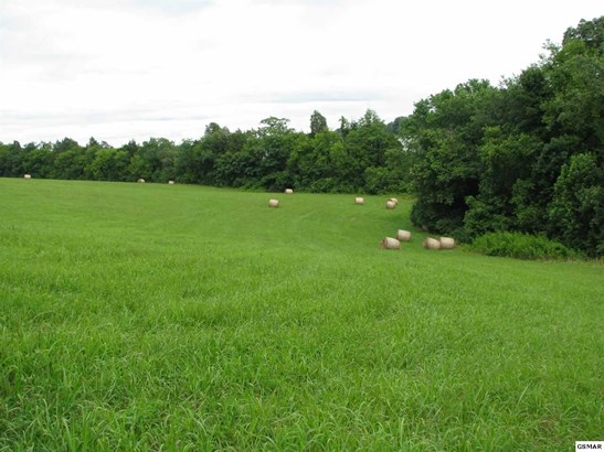 Lots and Land - Loudon, TN (photo 2)