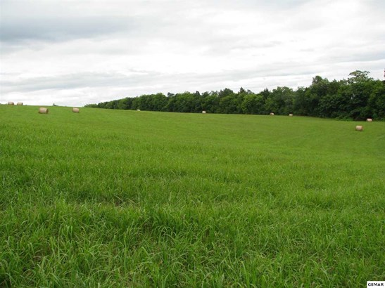 Lots and Land - Loudon, TN (photo 3)