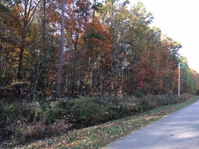 Lots and Land - Hohenwald, TN (photo 1)