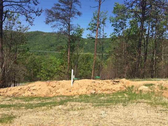 Lots and Land - Gatlinburg, TN (photo 3)