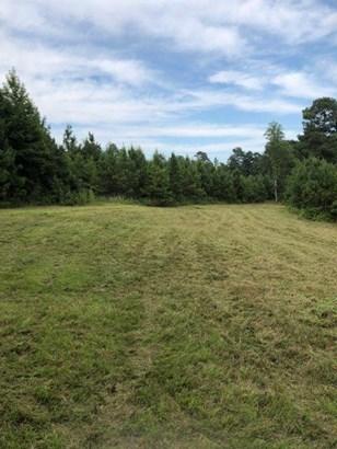 Lots and Land - Guntown, MS