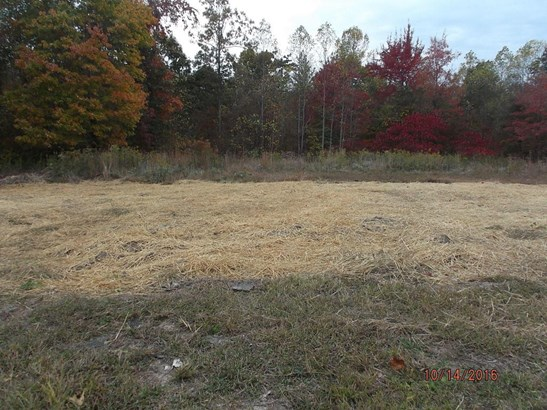 Lots and Land - Whitwell, TN (photo 3)