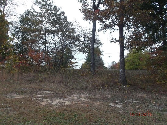 Lots and Land - Whitwell, TN (photo 5)