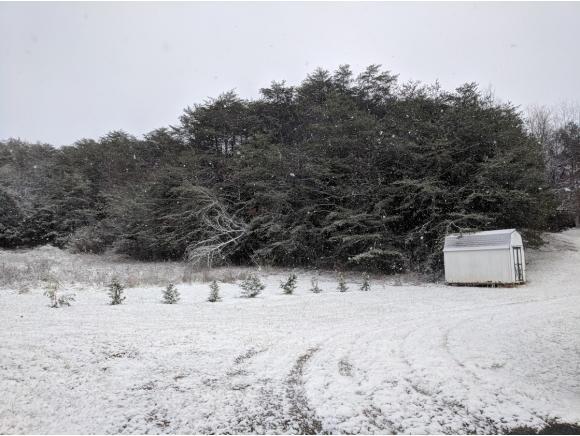 Residential/Single Family - Telford, TN (photo 5)