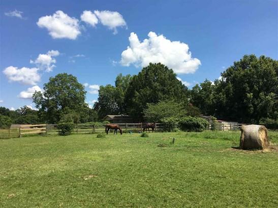 Residential/Single Family - Williston, TN (photo 3)