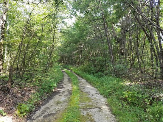 Lots and Land - Jamestown, TN (photo 1)