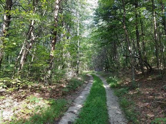 Lots and Land - Jamestown, TN (photo 5)