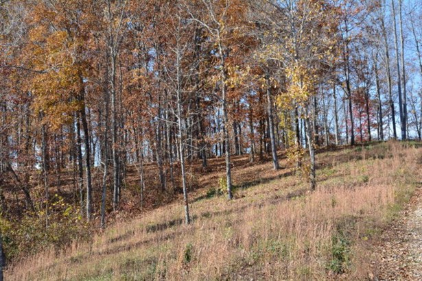 Lots and Land - Hilham, TN (photo 2)