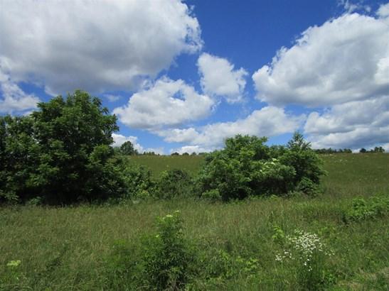 Lots and Land - Portland, TN (photo 4)