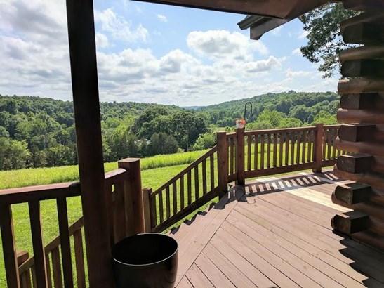 Residential/Single Family - Vanleer, TN (photo 4)
