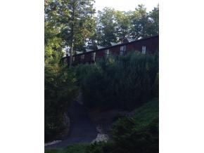 Residential/Single Family - Butler, TN (photo 3)