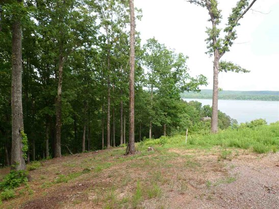Lots and Land - Counce, TN (photo 2)