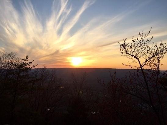 Lots and Land - Cloudland, GA (photo 3)