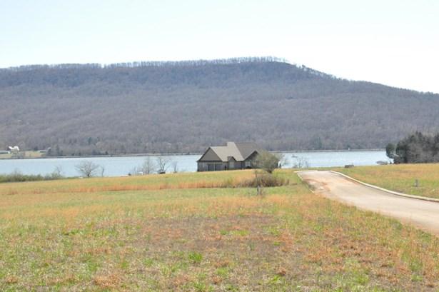 Lots and Land - Jasper, TN (photo 3)