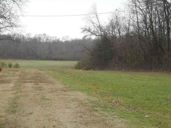 Lots and Land - Millington, TN (photo 5)