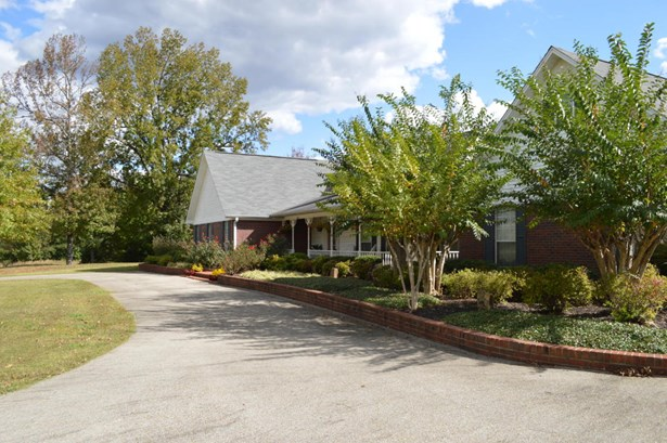 Residential/Single Family - Blue Springs, MS (photo 3)