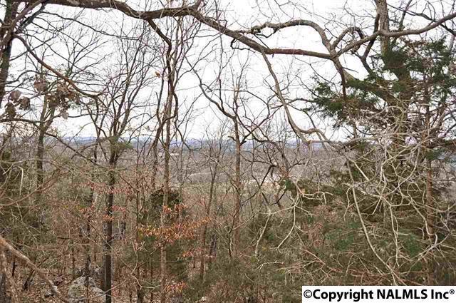 Lots and Land - HUNTSVILLE, AL (photo 5)