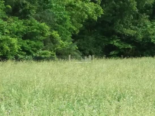 Lots and Land - Garfield, AR (photo 4)
