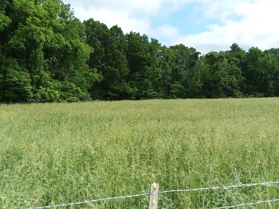 Lots and Land - Garfield, AR (photo 5)