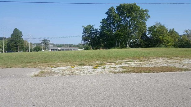 Lots and Land - Parsons, TN (photo 5)