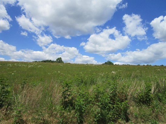 Lots and Land - Portland, TN (photo 3)