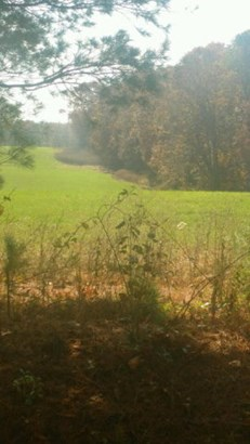 Lots and Land - Deer Lodge, TN (photo 2)