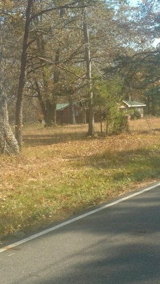 Lots and Land - Deer Lodge, TN (photo 5)